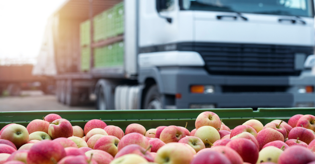 2019-insights-into-imports-to-china-consumer-goods-food-wine-3